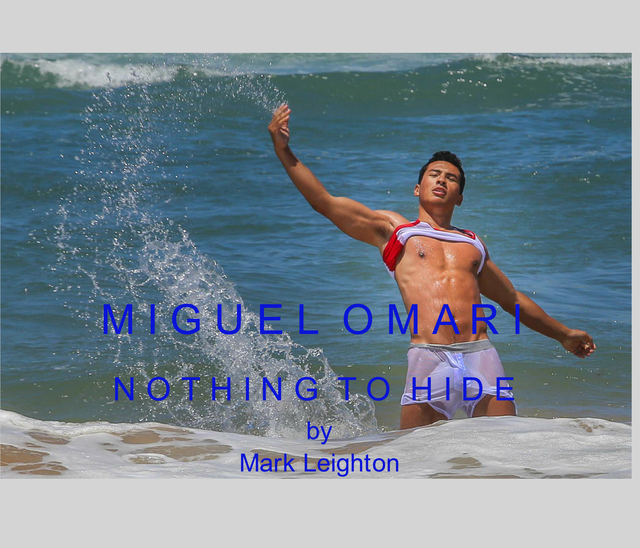 Mark Leighton Photography Miguel Omari ebook